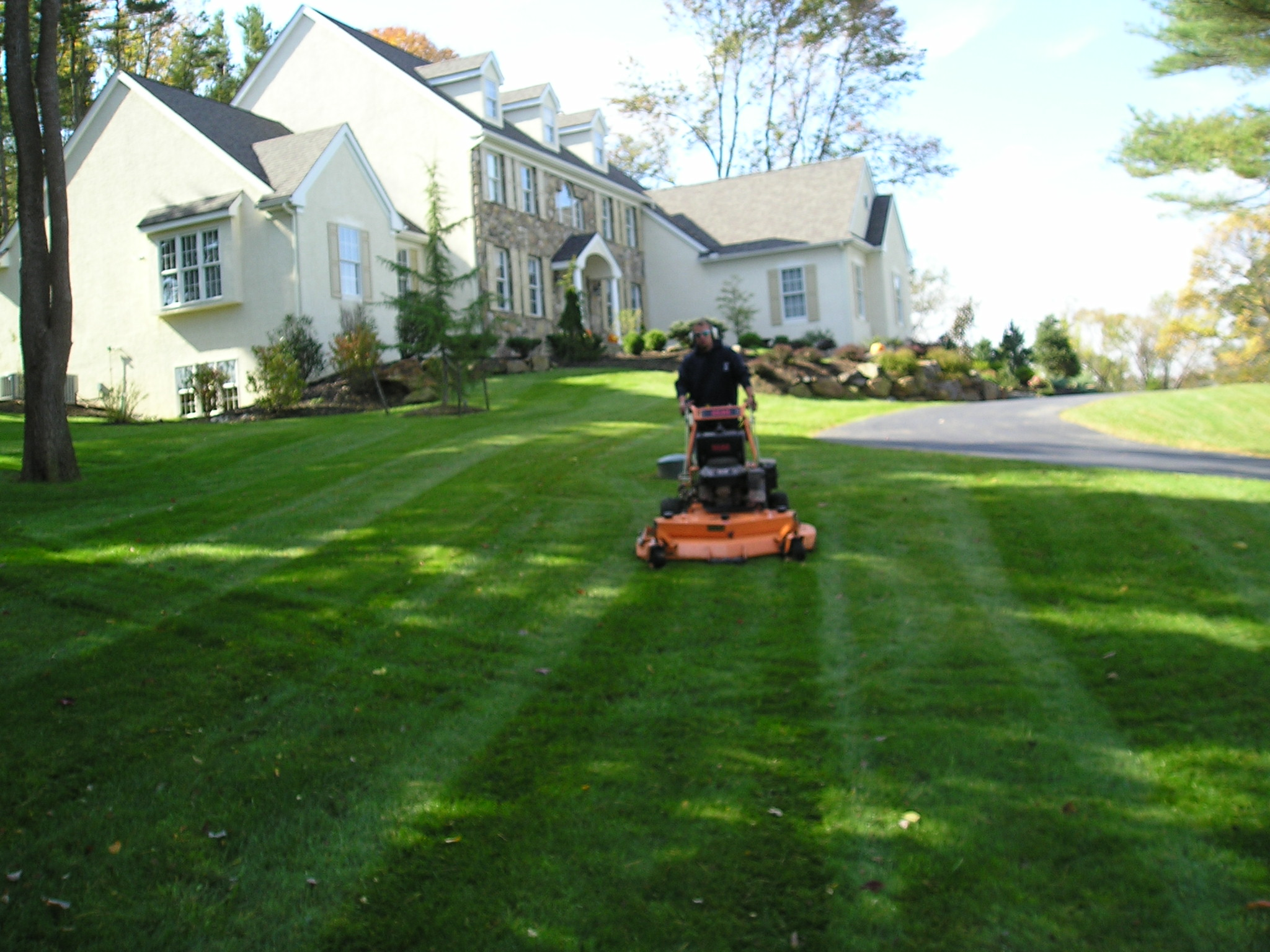 Gallery degree lawn landscape for Lawn mowing and garden maintenance