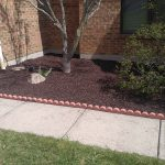 Rubber Mulch Installation